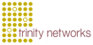 trinity networks – Ihr IT-Partner Logo